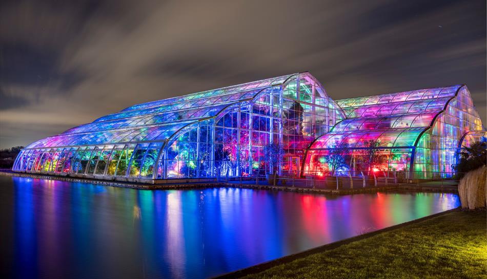 Christmas Glow at RHS Garden Wisley 2020