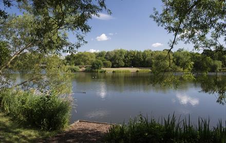 Goldsworth Lake