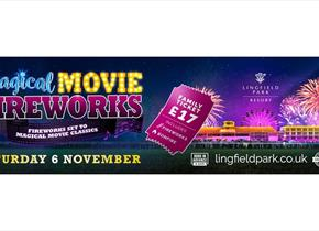 Magical Movie Fireworks at Lingfield Racecourse