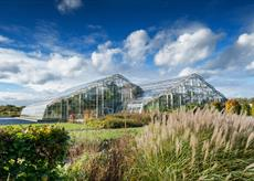 View towards the Glasshouse in Autumn at RHS Garden Wisley ©RHS. Credit Line RHS, Adam Duckworth  MAR0021357