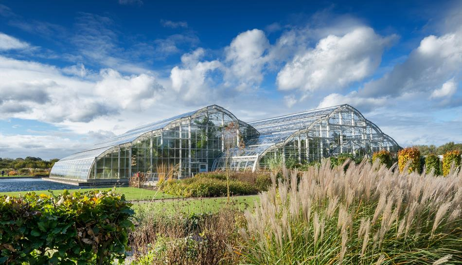 View towards the Glasshouse in Autumn at RHS Garden Wisley ©RHS. Credit Line RHS, Adam Duckworth  MAR0021357