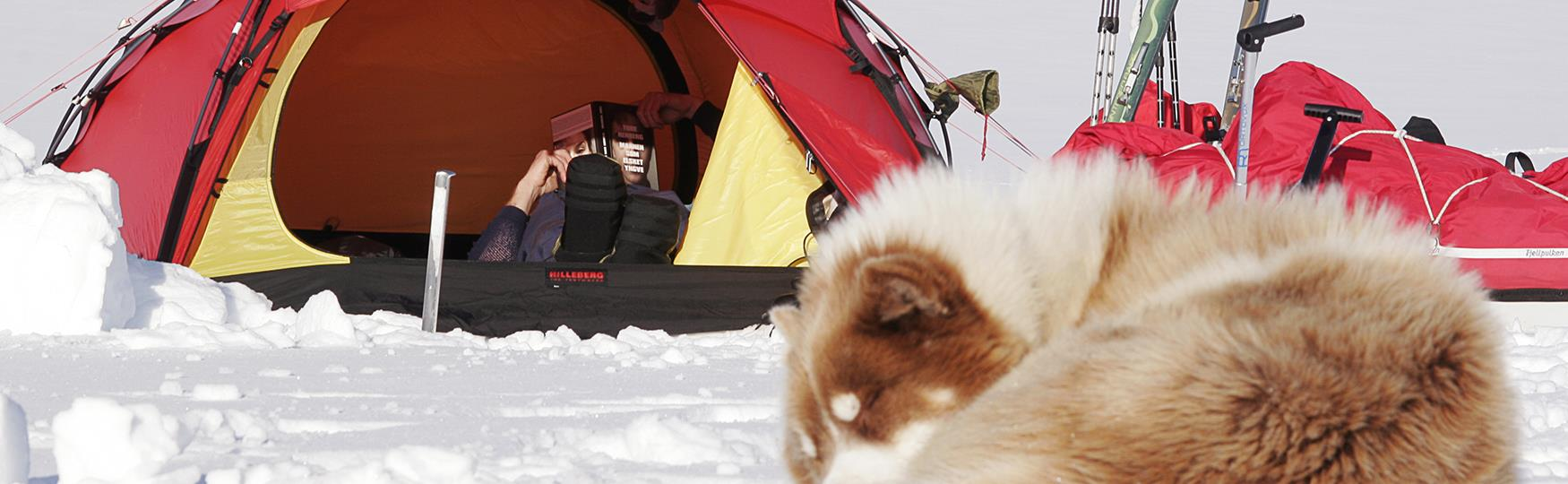 Expeditions in the High Arctic
