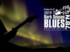 Blues festival, gitarist|