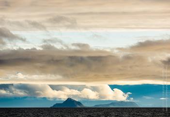 Fugleekskursjon med Arctic BBQ - Spitzbergen Adventures
