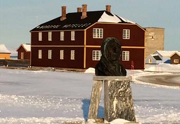 Ny-Ålesund - The northernmost town in the world - Better Moments