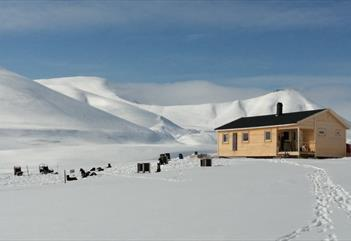 The cabin Reinheim in wintertime with dogs resting out front