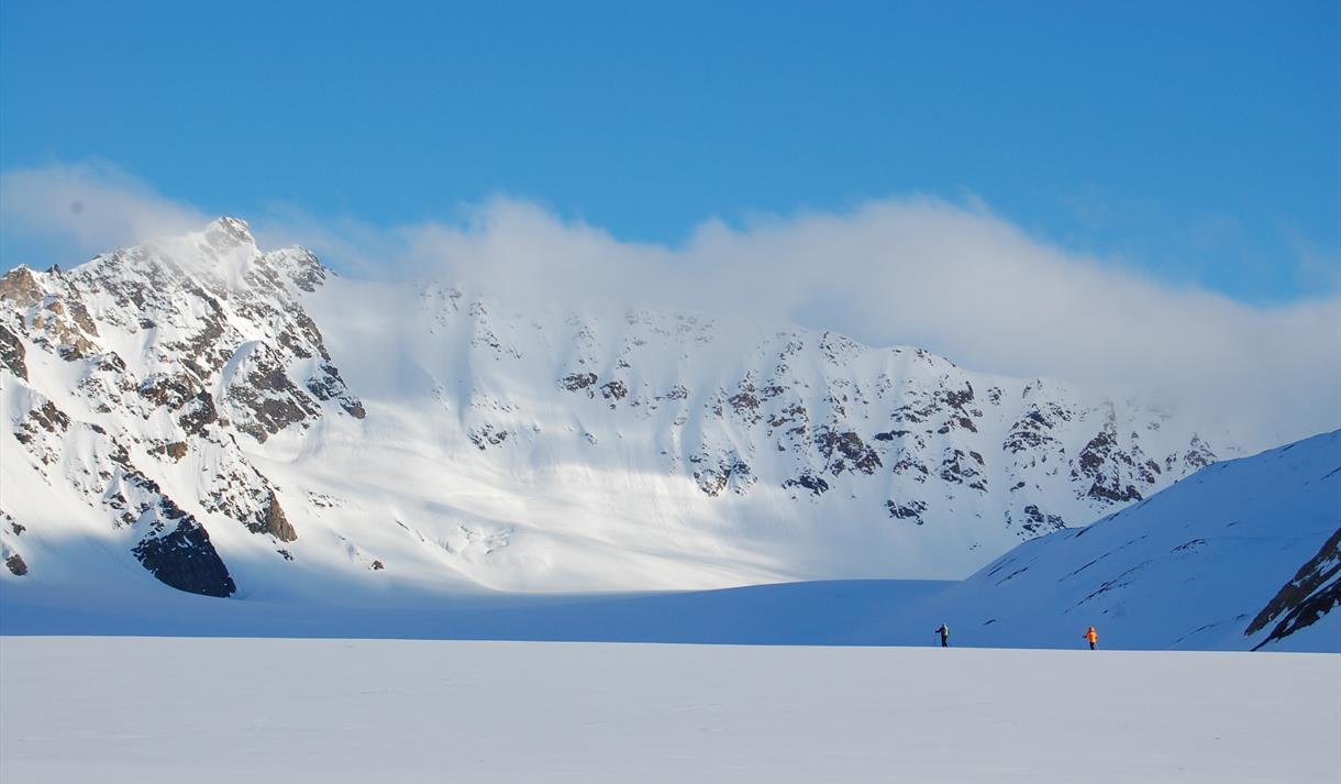 Skiløpere i fjell-landskap