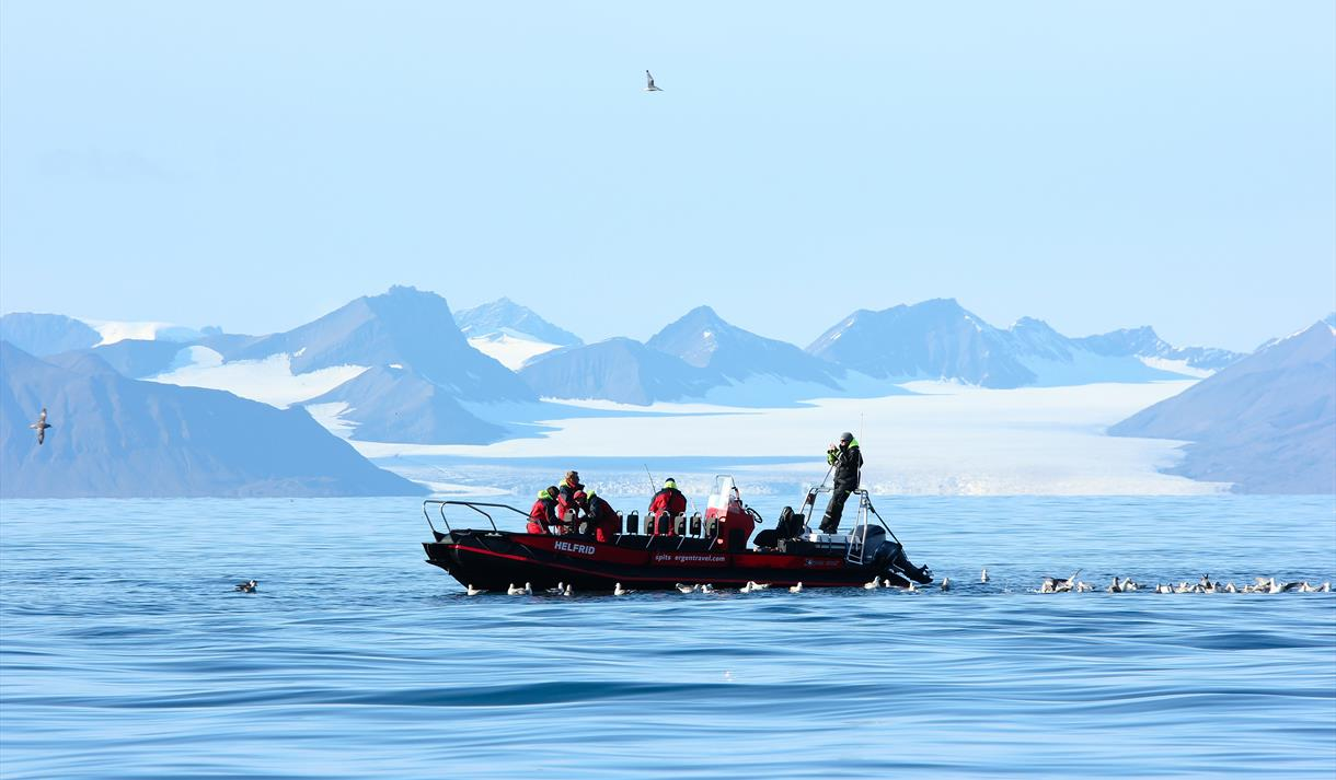 Persons fishing from a RIB boat on Isfjorden while surrounded by seagulls