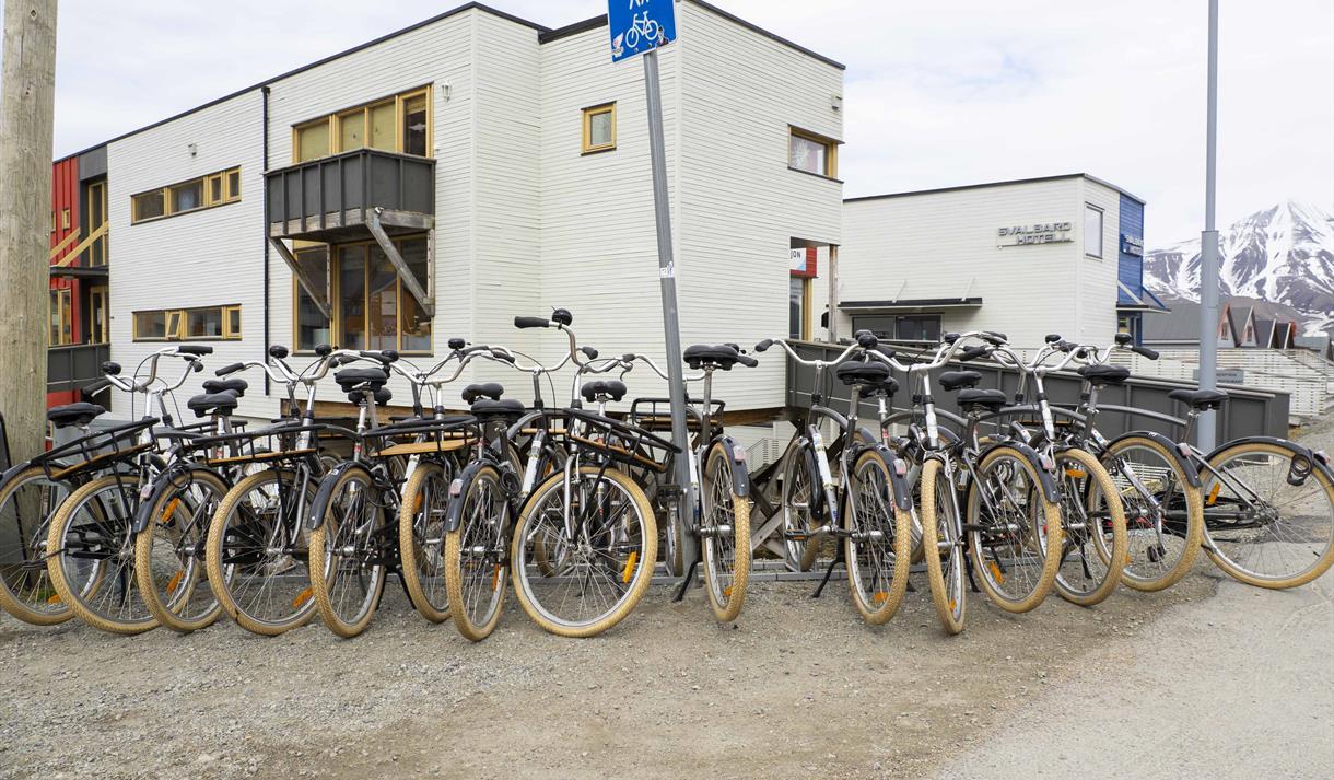 Rental bikes on a bike rack