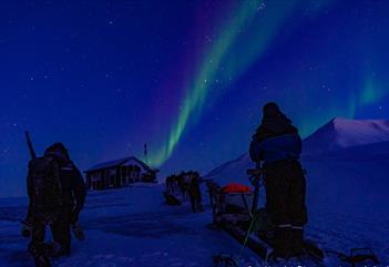 Sled team in the polar night