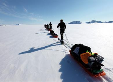 A tour group pulling sleds while skiing in a row