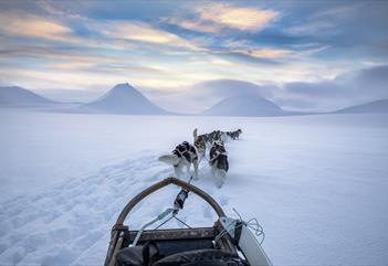 Dog Sled Expedition - Svalbard Villmarkssenter