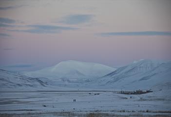 Alt i ett! - Sightseeing, huskybesøk & natur - Discover Svalbard