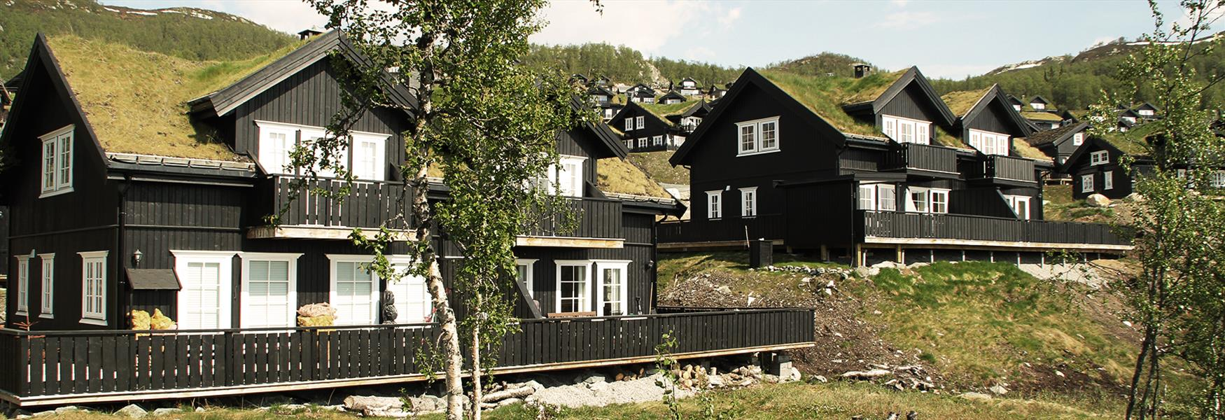 Cottages at Rauland