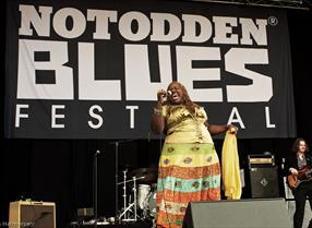 Notodden Bluesfestival er Norges største Bluesfestival som arrangeres hvert år i august i Notodden i Telemark.