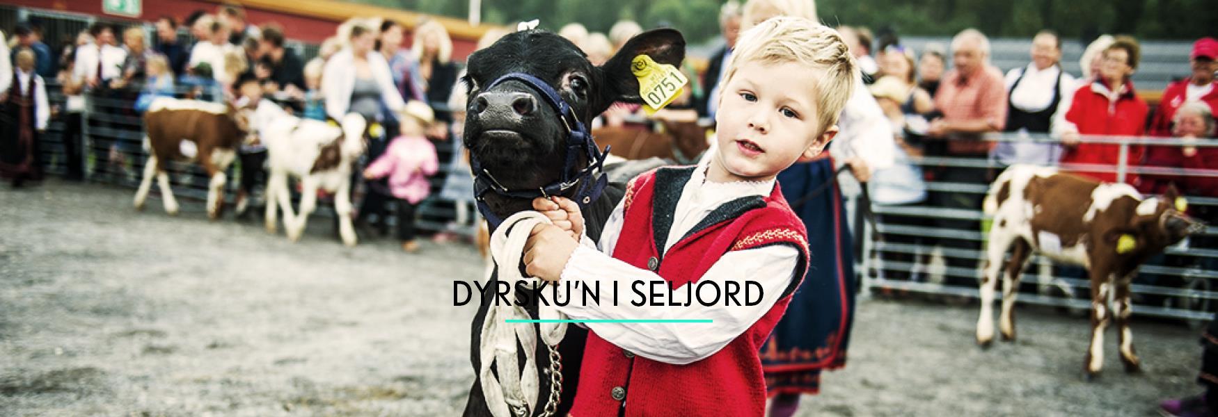 Dyrsku'n festival at Seljord