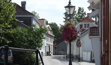Snipetorp district