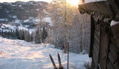 Vinterbilde, Sondrestoga med Sondreski utanfor døra