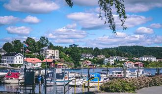 Down Town Guest harbor