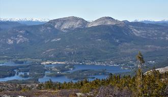 Utsikt mot Vrådal fra Fagerlihei i Tørdal