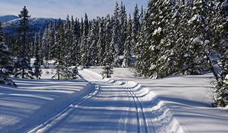 Høydalsmo om vinteren