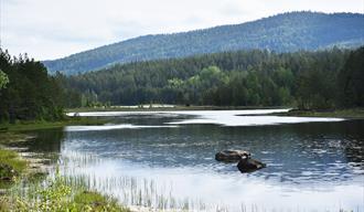 innsjø i nærheten av Villmarkseventyret bobilparkering