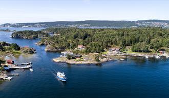 Bjørkøya