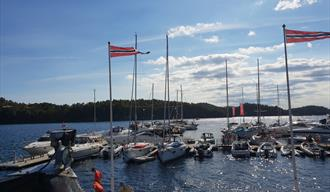 Valle Guest harbor