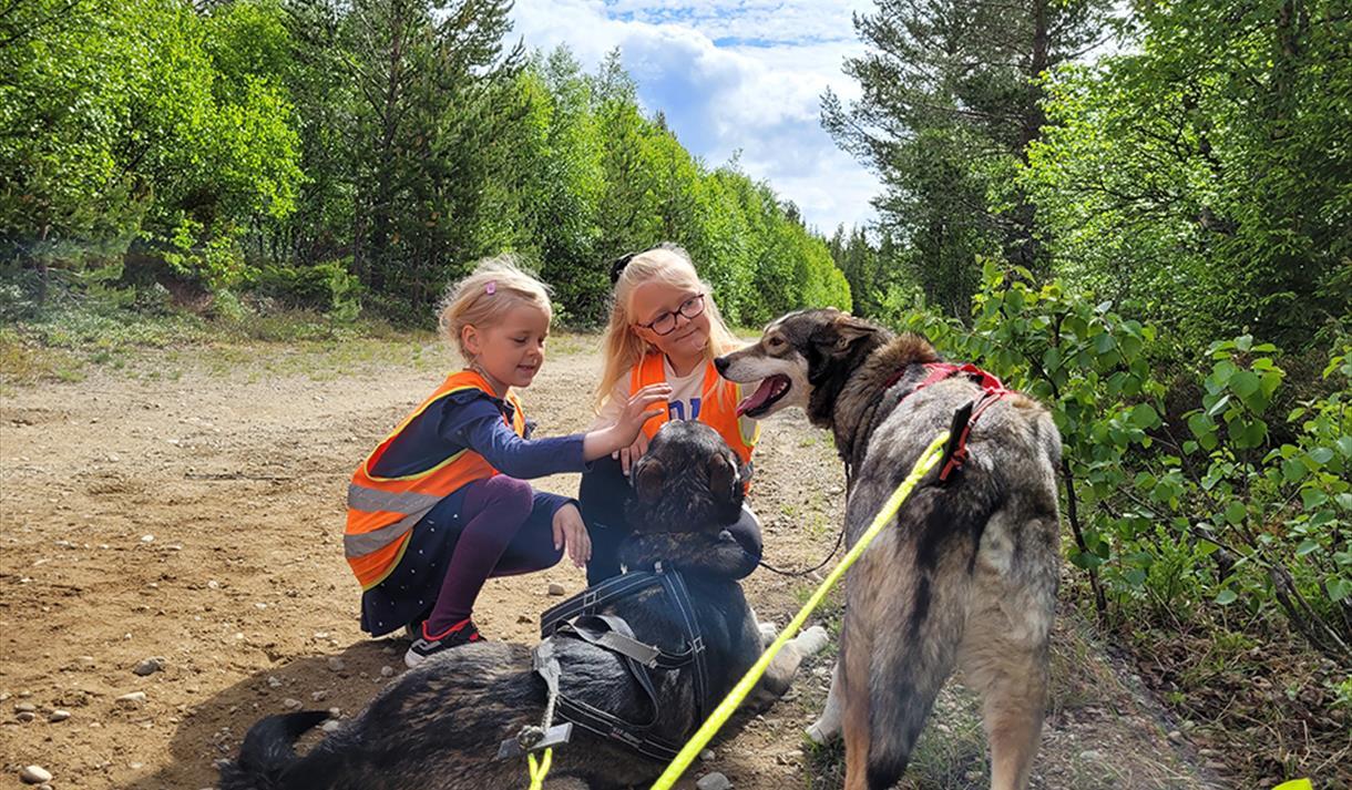 2 jenter klapper hundene fra Telemark Husky Tours