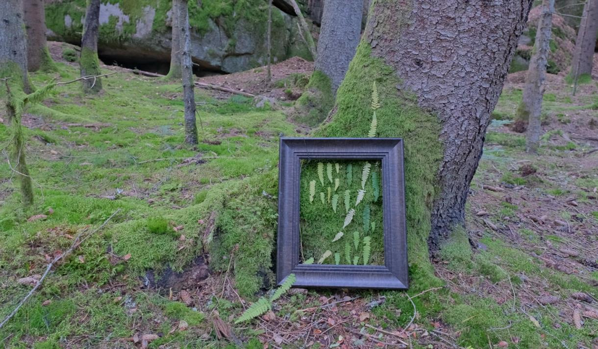 Land art, ramme med mose og blader i skog
