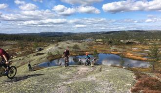 Gruppe syklister sykler over svabergene på Gautefall