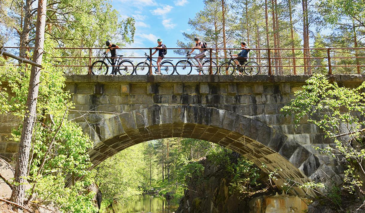 """group of cyclists cycle over a bridge on the cycle path """"old Treungenbanen"""""""