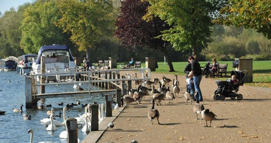The Thames Path and Higginson Park at Marlow