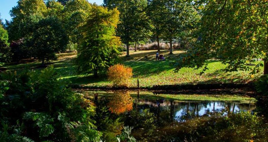Savill Garden, Near Windsor