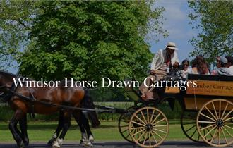 Windsor Horse Drawn Carriages