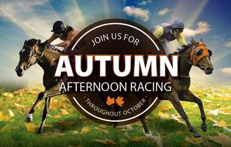 Autumn Afternoon Racing