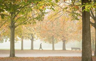Terry Gibbins photography of London