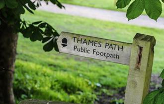 Thames Path 100