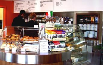 Cafe Tucci