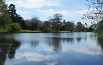 The Vyne Lake
