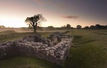 Birdoswald Roman Fort