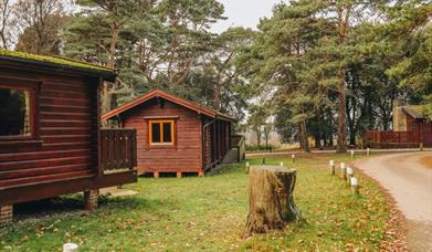 Accommodation at Avon Tyrell Outdoor Centre
