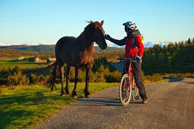 Cycling at Tansberg.