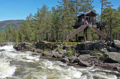 Tretopphyttene til Fosstopp ligger rett ved den mektige elva Aurdøla og villmarksparadiset Vassfaret.
