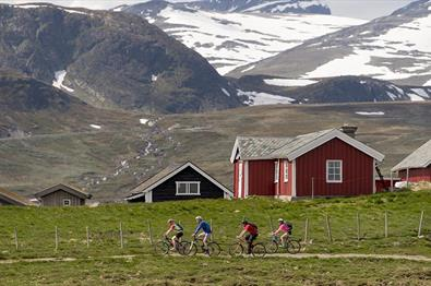 Syklister langs Jotunheimvegen|