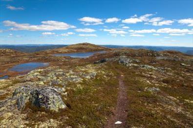 Utsikt fra Bjørgovarden i Aurdal|