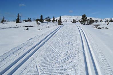 Cross country skiing in Sør-Aurdal at Hellebekk.