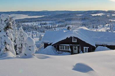 Self owned cabins and properties at Ølnesseter