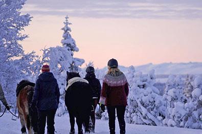 Thumbnail for Vinteraktiviteter uten ski