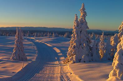 Thumbnail for Jul i Valdres